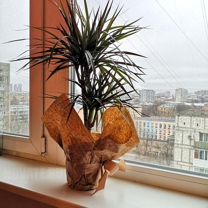 Качественные пластиковые окна должны способствовать поддержанию заданного микроклимата в помещении.